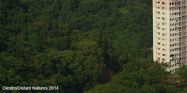 Alvarez Diestro/Distant Natures 2014
